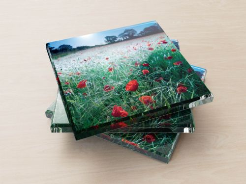 Poppies, Midsummer Dawn - Glass Coasters